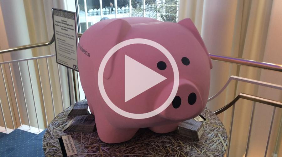Fachinfo Schwein Beim Deutschen Fleischkongress